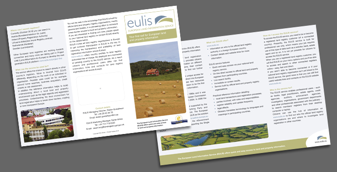 flyer design eulis